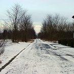 Carlotastraße 05