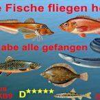 FischeFliegenHoch